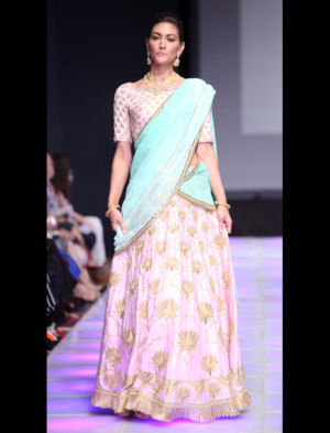 Sushma Patel-525-23